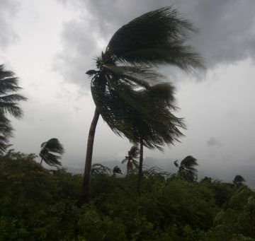 Hurricane Michael Leaves a Trail of Destruction