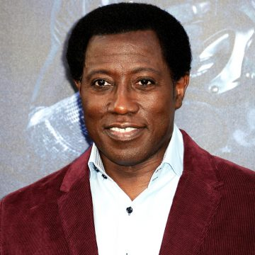 Wesley Snipes Ordered to Pay Millions to the IRS